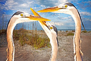 Dunes Digital Art Prints - Herons Print by East Coast Barrier Islands Betsy A Cutler