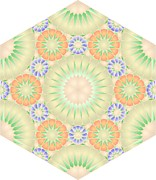 The Nature Center Digital Art - Hexagonal Tile Abas140 by Cam Macfarlane