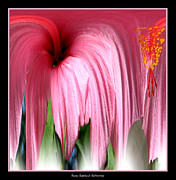 Rose Santuci-sofranko Posters - Hibiscus Abstract 1 Poster by Rose Santuci-Sofranko