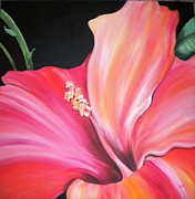 Large House Prints - Hibiscus Print by Debi Pople