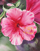 Blooming Painting Originals - Hibiscus by Irina Sztukowski