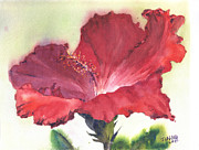 Hawai Painting Prints - HIbiscus Print by Jialing Chen