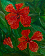 Peter Turner Metal Prints - Hibiscus Metal Print by Peter Turner