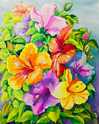 Watercolor Paintings - Hibiscus Rainbow Array by Janis Grau