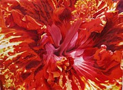 Jamaican Art Paintings - Hibiscus by Sharon Fox-Mould