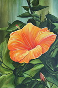 Tangerine Paintings - Hibiscus - Tangerine by Lyndsey Hatchwell
