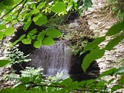 Buttermilk Falls State Park Prints - Hidden Falls Print by Anthony Thomas