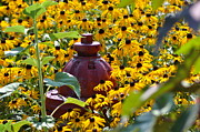 Living Waters Photography - Hidden Hydrant