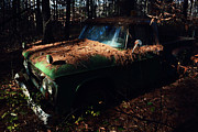 Emily Stauring - Hidden In The Pine