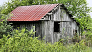 Rusted Tin Roof Photos - Hidden by JC Findley