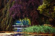 Hidden Shadow Bridge At The Pond. Park Of The De Haar Castle Print by Jenny Rainbow