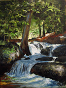 Carol Hart - Hidden Waterfall
