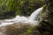 Tn Prints - Hidden Waterfall Print by Debra and Dave Vanderlaan
