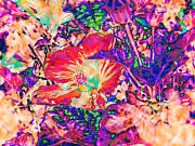 Marilyn Holkham Prints - Hiding Hibiscus Print by Marilyn Holkham