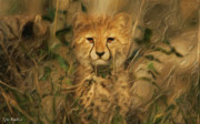 Cheetah Mixed Media Framed Prints - Hiding in the Tall Grass Framed Print by Tyler Robbins