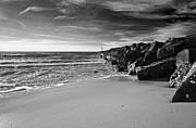 Jennifer Lyon - Higbee Beach b/w