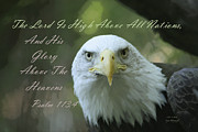 Scripture With Eagle Posters - High Above All Nations Poster by Sharon  Smith