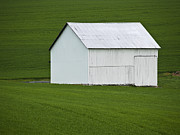 Old Farm Shed Originals - High Contrast by Andy Smetzer