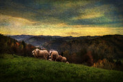 Cloudscape Digital Art - High Hill Pasture by Vjekoslav Antic
