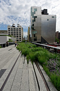 Rail Line Prints - High Line NYC Print by Gary Eason
