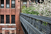Chelsea Prints - High Line Park Print by JC Findley