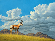 High Meadow - Pronghorn Print by Paul Krapf