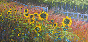 Arbor Paintings - High Summer by Jeanette French