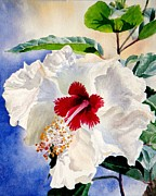 Flower Still Life Prints Prints - High Voltage Hibiscus Print by Lisa Pope