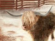 Snow Pastels Originals - Highland Bull by Anastasiya Malakhova
