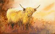 Paul Dene Marlor - Highland Cow 1
