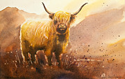Highland Cow Art - Highland Cow 2 by Paul Dene Marlor