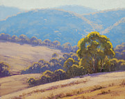 Sheds Prints - Highland grazing Lithgow Print by Graham Gercken