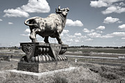 Road Trips Prints - Highway Bull Print by Daniel Hagerman