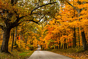 Indiana Autumn Prints - Highway to Heaven Print by Jim McCain