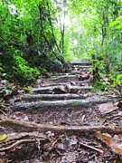 Staircase Painting Metal Prints - Hike Metal Print by Pamela White