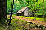 Log Cabin Photos - Hillbilly Heaven by Robert Harmon