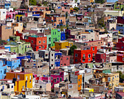 Guanajuato Prints - Hillside Homes Print by Douglas J Fisher