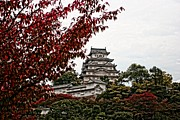 Hyogo Prefecture Prints - Himeji Castle in the Fall Print by Priscilla De Mesa