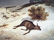 Deer In Snow Framed Prints - Hind Forced Down In The Snow Framed Print by Gustave Courbet