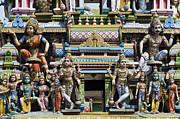 Indian Deities Metal Prints - Hindu Temple Gopuram Statues Metal Print by Tim Gainey