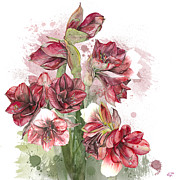 Colorful Art - Hippeastrum 4. DAY -  Elena Yakubovich by Elena Yakubovich