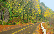 Steve Warnstaff - Historic Columbia Gorge...