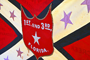 Confederate Flag Framed Prints - Historic Florida flag Framed Print by David Lee Thompson
