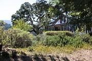 Wine Country. Framed Prints - Historic Jack London Cottage and Garden in Glen Ellen California 5D24569 Framed Print by Wingsdomain Art and Photography