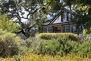 Wineries Posters - Historic Jack London Cottage and Garden in Glen Ellen California 5D24570 Poster by Wingsdomain Art and Photography