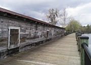 Waccamaw Posters - Historic Steamer Terminal on the Waccamaw River Poster by MM Anderson