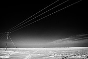 Sask Prints - Hoar Frost Covered Electricity Transmission Lines Snow Covered Prairie Agricultural Farming Land Wit Print by Joe Fox