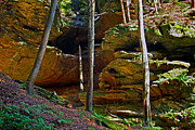Ledge Photos - Hocking Hills by Karen Adams