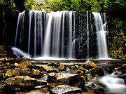 Waterfall Photos - Hogg Falls by Matthew Winn