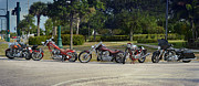 Harley Davidson Photos - Hogs And Choppers by Laura  Fasulo